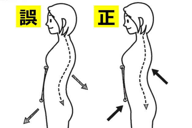 正しい立ち方、正しい姿勢のみぞおちと下腹部の位置