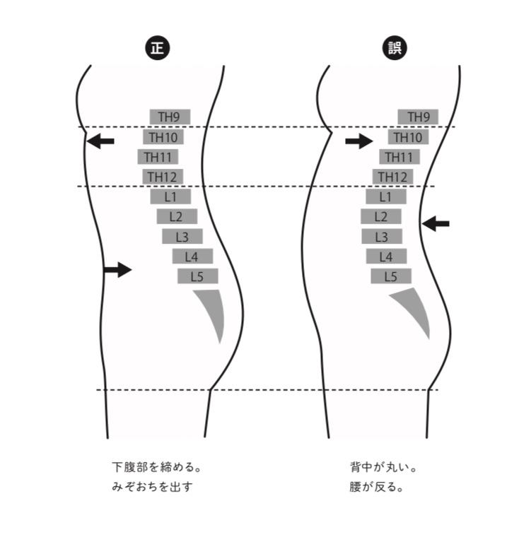 正しい姿勢、正しい立ち方の背骨の形