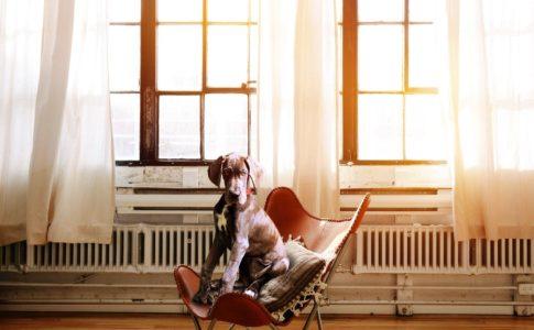 体が固めない正しい椅子の座り方